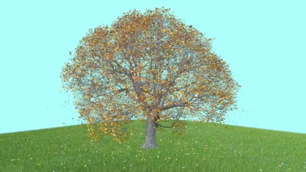 3D-Objektbaum mit fallenden Blättern, Hintergrund, Animation