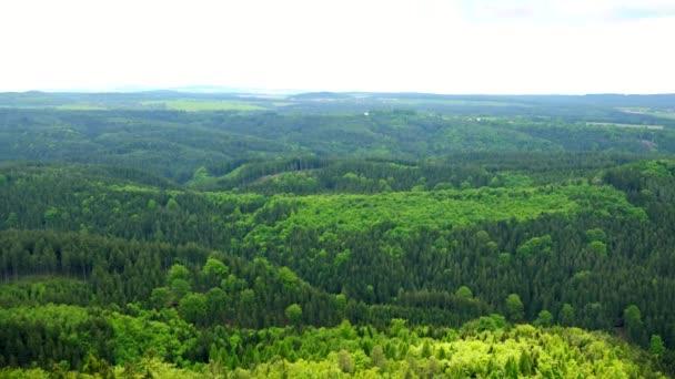 Obrovské, silné lesní plocha, kopci a jasné obloze na pozadí - top