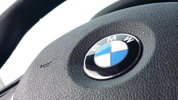 closeup on a steering wheel with a BMW symbol