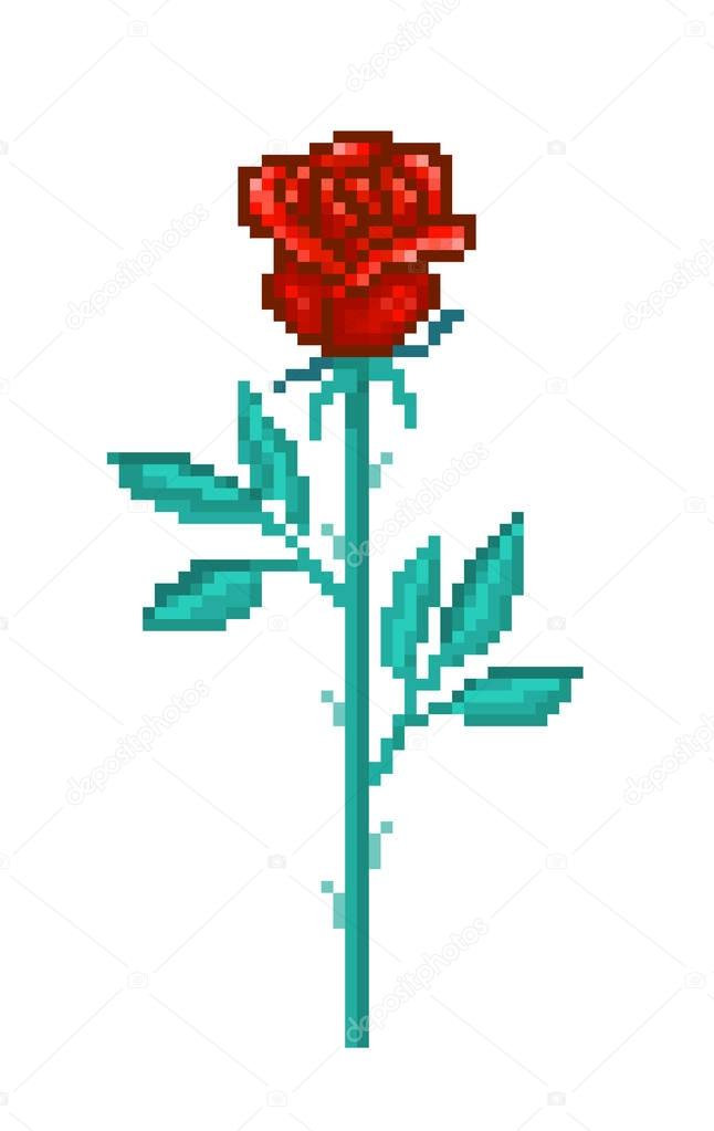 Single Red Rose Pixel Art Flower Isolated On White