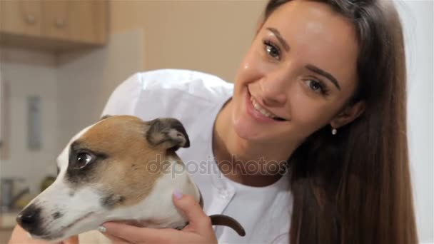 Női állatorvos fordul a kutyák fej