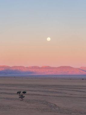 Landscape ion the Namib Desert