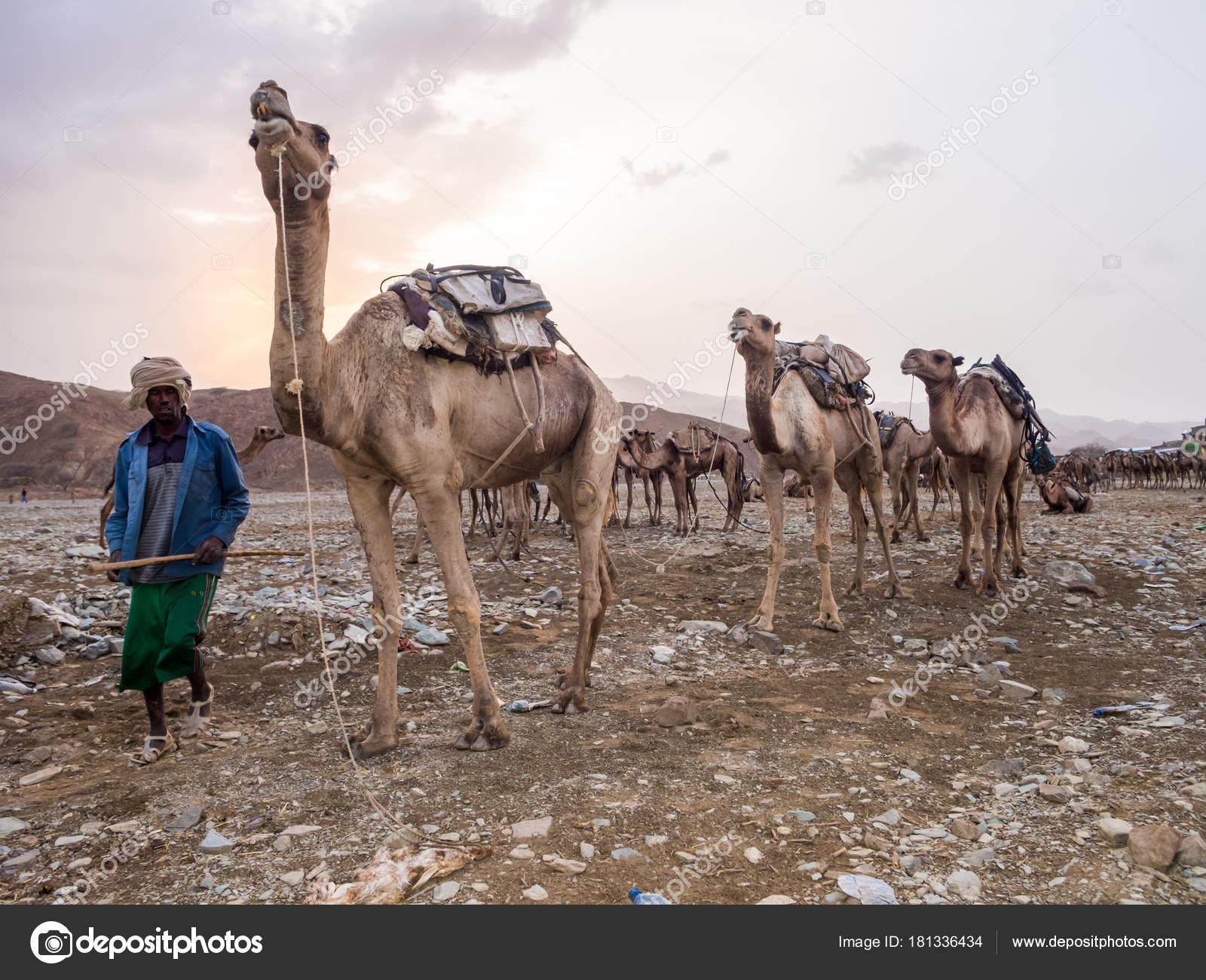 アファール州は エチオピア 2016...