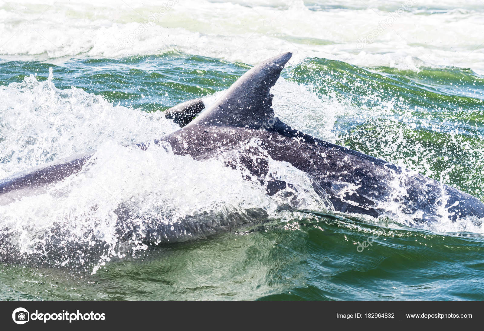 datation Namibie Walvis Bay datant Cantagalli poterie
