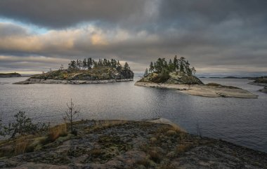 Two islands covered in forest. Nordic landscape. Scenic view