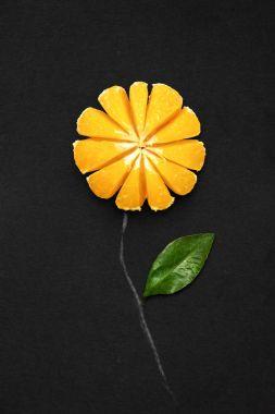 Tangerine in bloom.