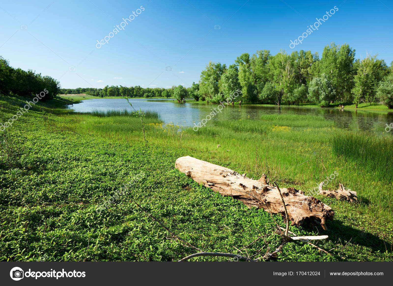 ウラル川。カザフスタン。西カザ...