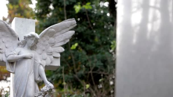 Cemetery: Stone Angel grave stone (tracking dolly shot)