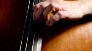 Cellist left hand technique