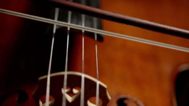 Cselló, közeli részlet egy csellista akcióban.