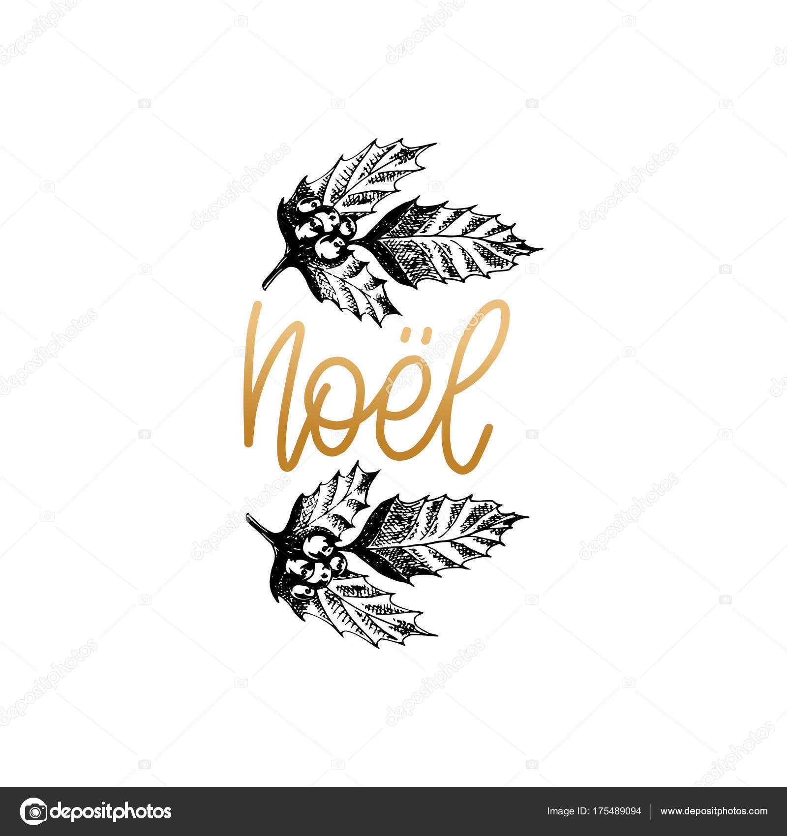 Noel translated french christmas lettering vector hand drawn noel translated french christmas lettering vector hand drawn illustration mistletoe stock vector buycottarizona Image collections