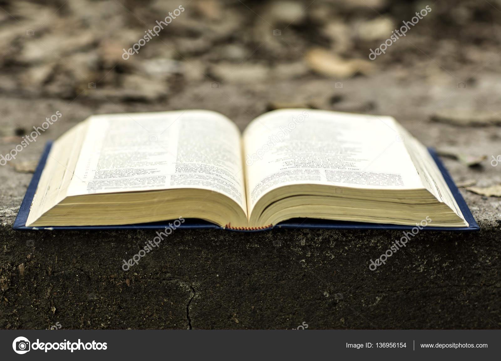 Imágenes Biblias Abiertas Para Niños El Libro De La Biblia Foto