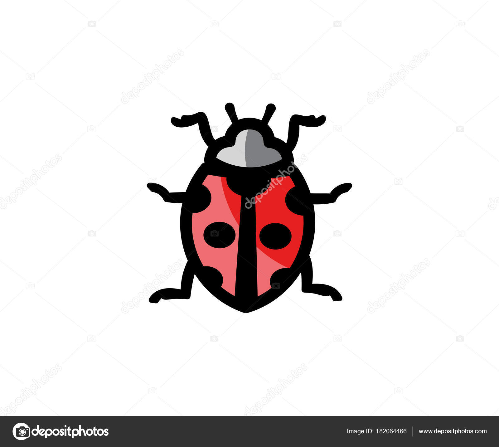 Colorful Lady Bug Template Motif