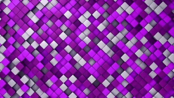 Technológiai háttér animáció hullám mozaik lila négyzetek, Animáció zökkenőmentes hurok