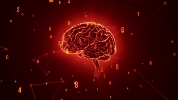 Animation of rotation red human brain with flying data around on grey background. Animation of seamless loop