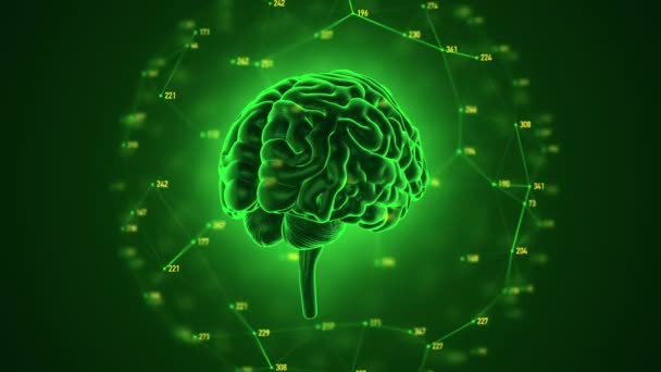 animation of rotation human brain on background, science and social technology concept. Animation of seamless loop.