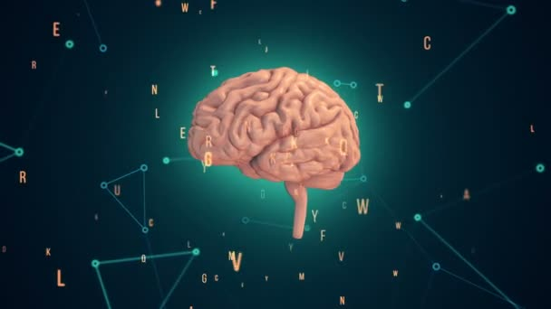 Animation of rotation pink human brain with flying data around on turquoise background. Animation of seamless loop