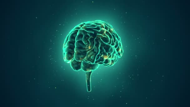 animation of rotation human brain on turquoise background, science and social technology concept. Animation of seamless loop.