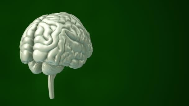 a rotáció élénkítése emberi agy, tudomány és társadalmi technológia koncepciója. Zökkenőmentes hurkok animációja.