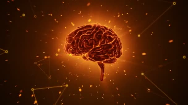 Animation of rotation orange human brain with flying data around on grey background. Animation of seamless loop