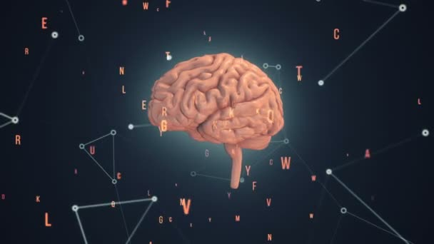 Animation of rotation pink human brain with flying data around on grey background. Animation of seamless loop