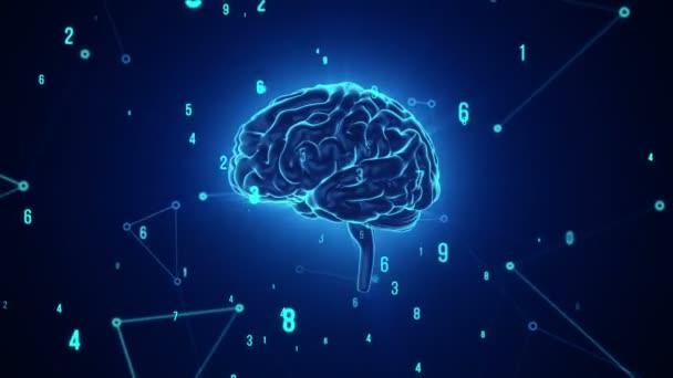 Animace rotačního modrého lidského mozku s letícími daty na šedém pozadí. Animace bezešvé smyčky