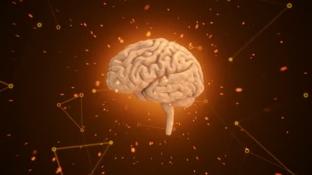 Animation of rotation pink human brain with flying data around on orange background. Animation of seamless loop