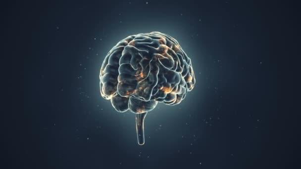 animace rotace lidského mozku na šedém pozadí, koncepce vědy a sociálních technologií. Animace bezešvé smyčky.
