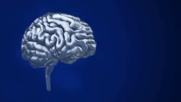 Animation of rotation human brain with flying data around on background. Animation of seamless loop