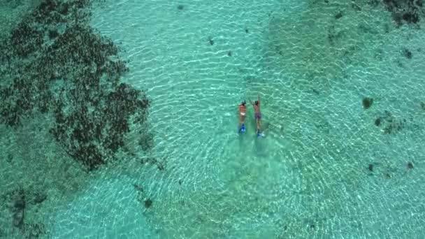 pár šnorchlování v mělké tyrkysové vodě