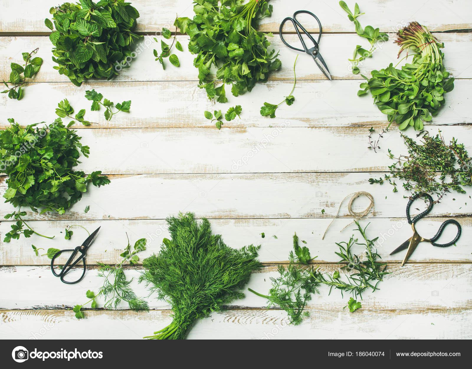 Verse Kruiden Keuken : Kruiden keuken verse kruiden in de keuken alles om van je