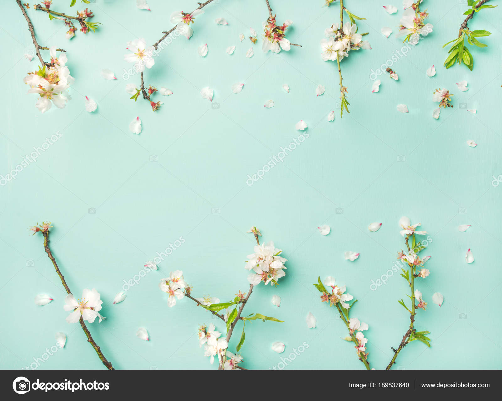 Spring Floral Background Texture Wallpaper White Almond Blossom
