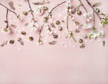 Easter holiday background. Tender Spring almond blossom flowers on branches, feathers and quail eggs over light pink background