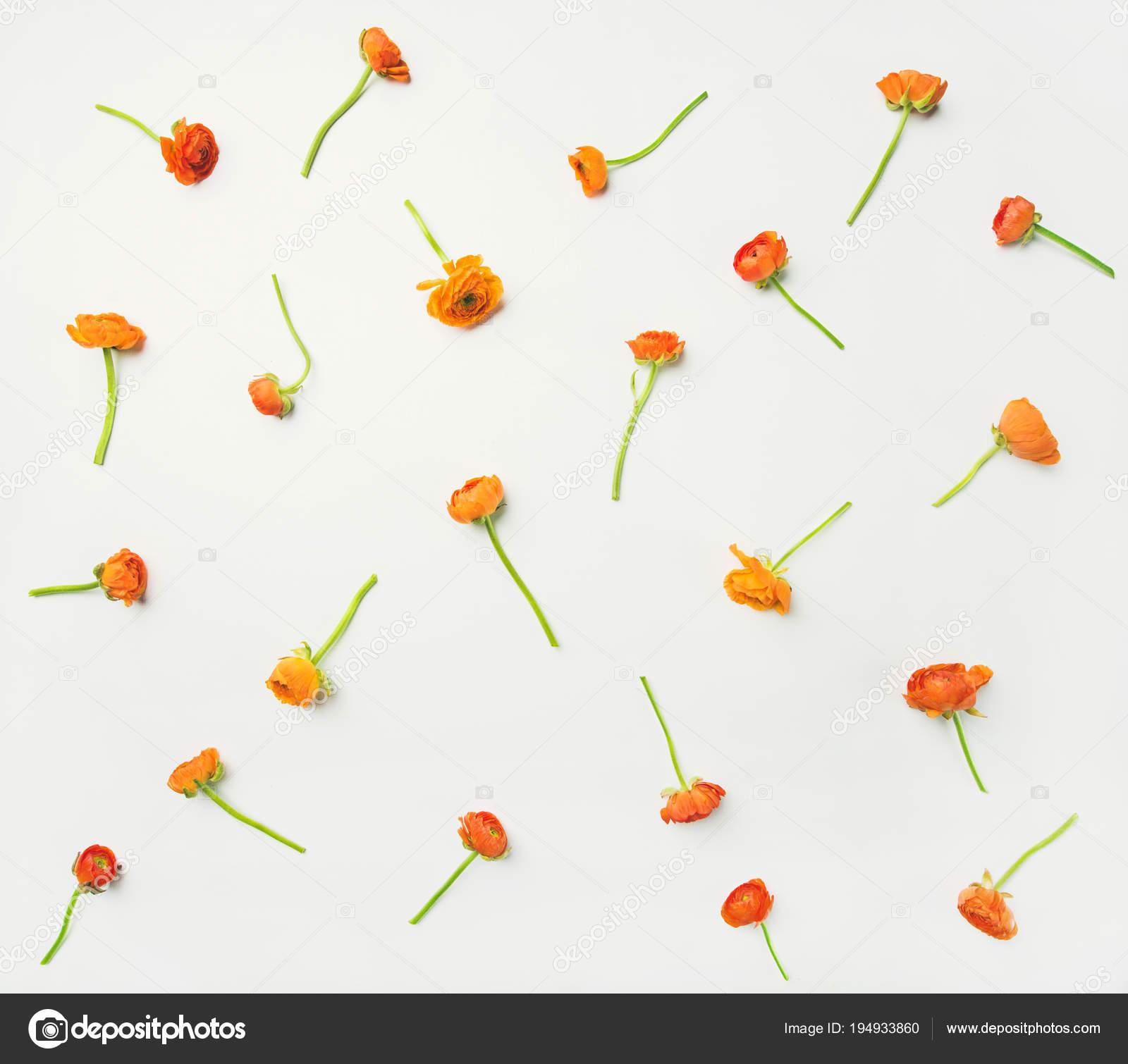 Floral Texture Motif Papier Peint Fleurs Renoncule Orange Vif Sur