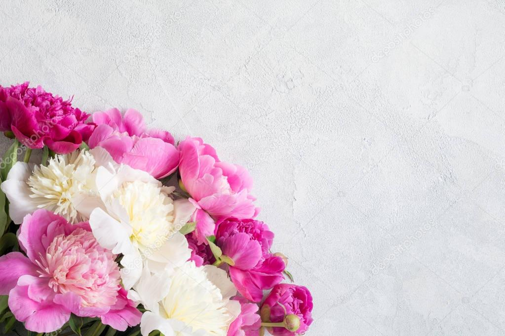 Pink and white peonies bouquet on grey background