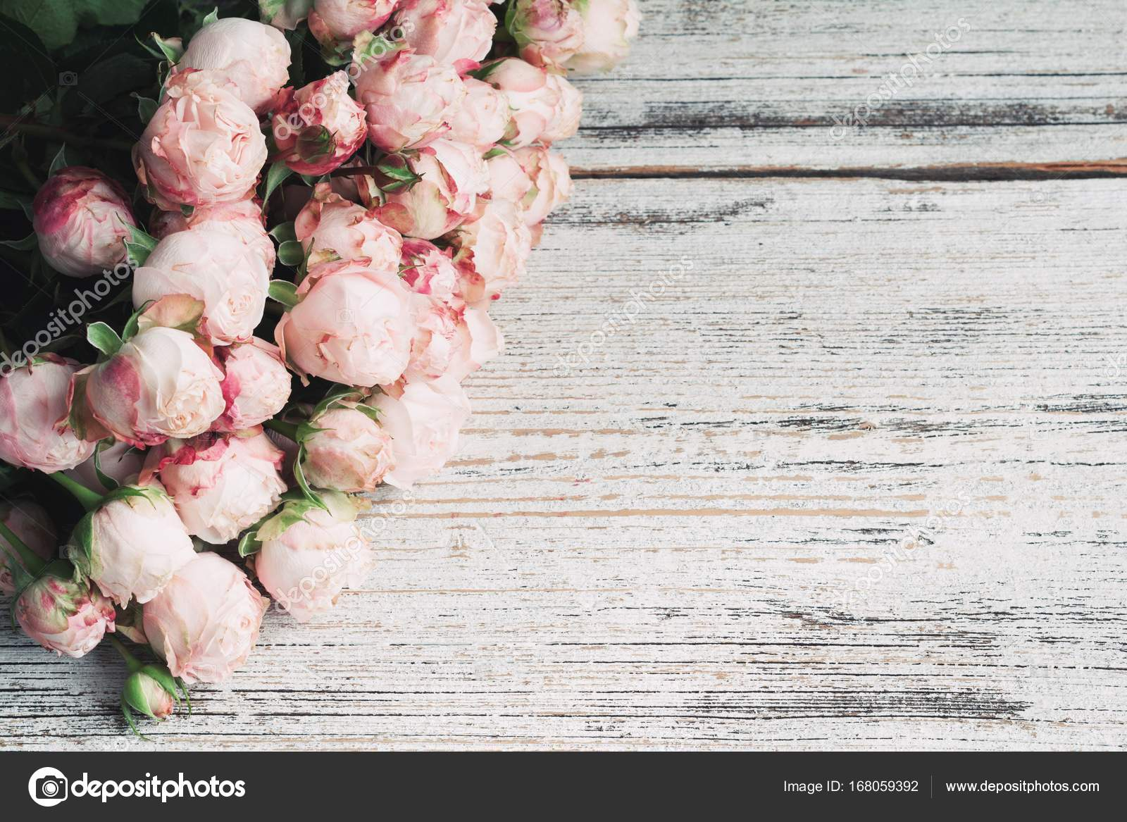 pink bush roses on vintage wooden background with copy space for text wedding floral frame stock photo c vladislavnosick 168059392 https depositphotos com 168059392 stock photo pink bush roses on vintage html
