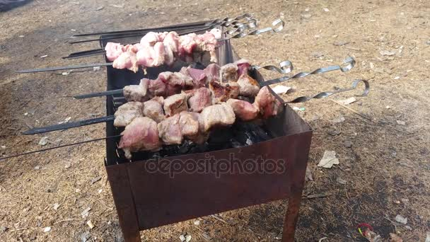 Šíš kebab na jehle