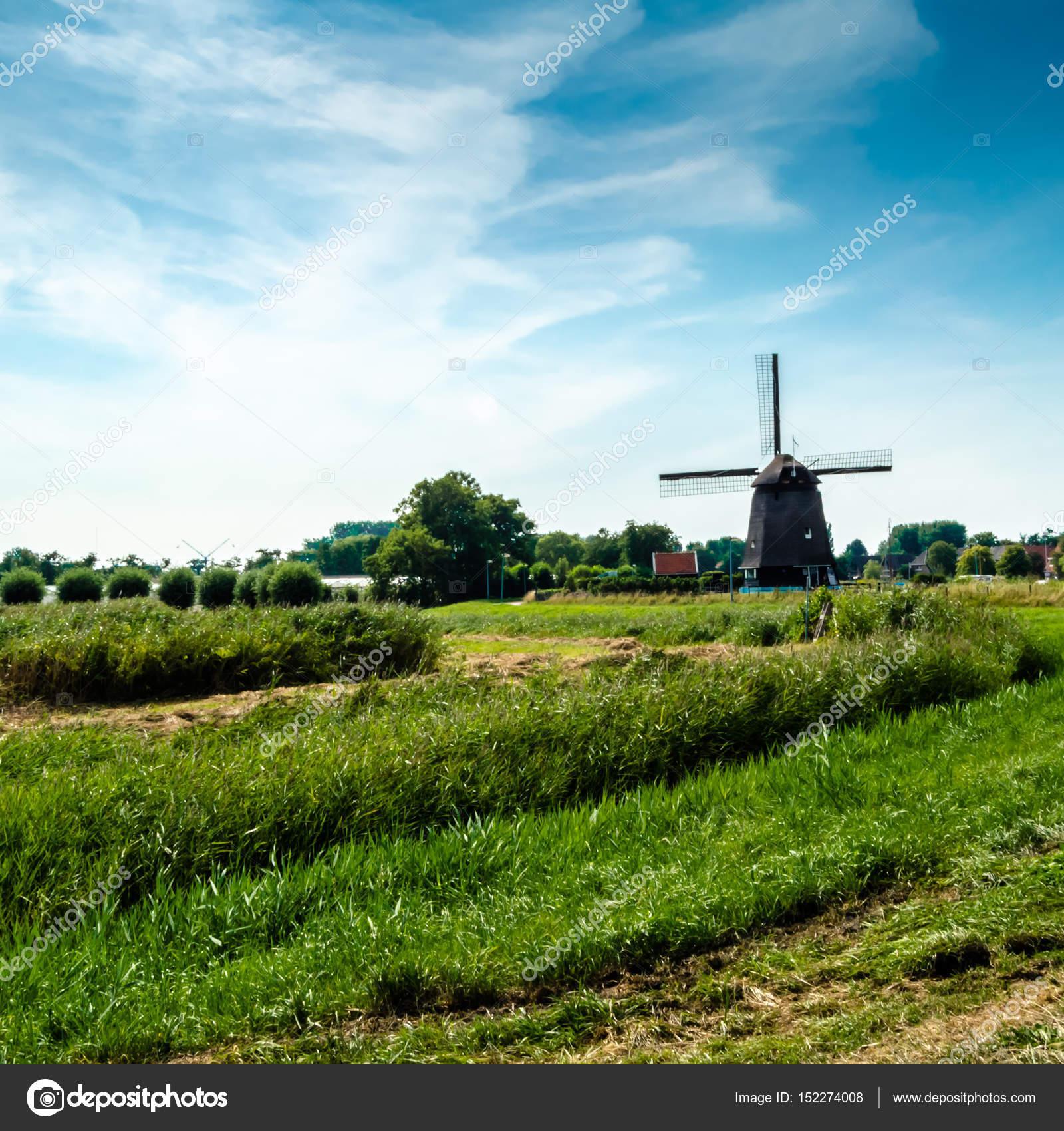 typical dutch landscape stock photo valentin lung 152274008