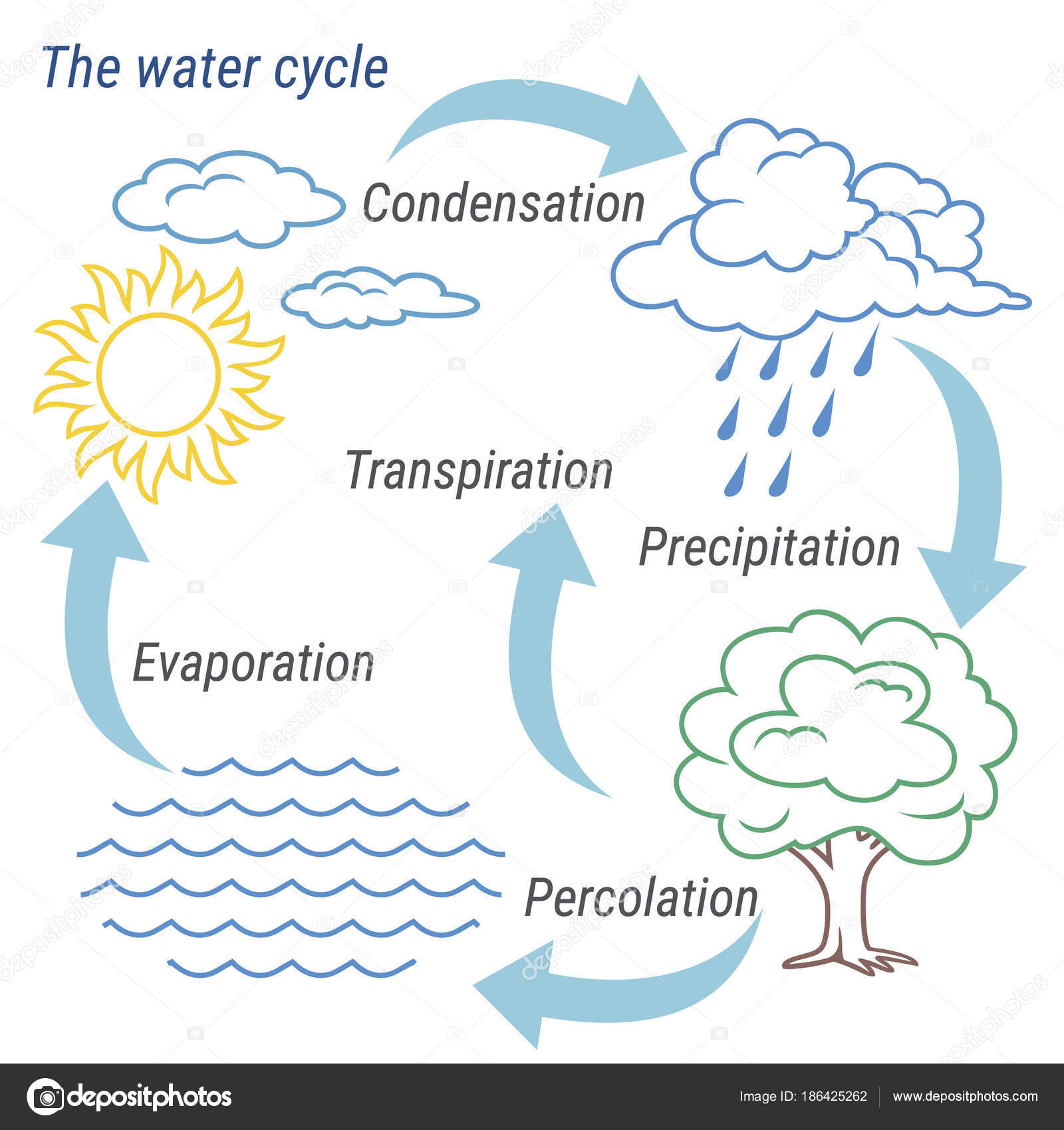 Water cycle line stock vector 3xy 186425262 vector schematic representation of the water cycle in nature illustration of diagram water cycle cycle water in nature environment vector by 3xy ccuart Gallery