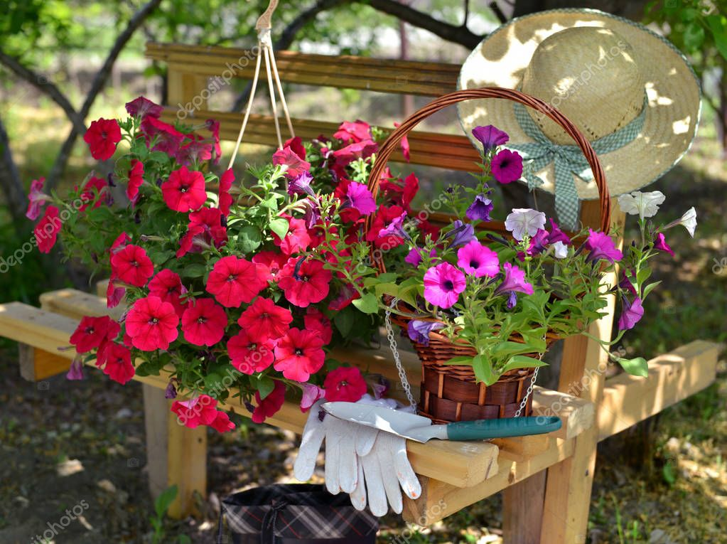 Still life with red petunia flowers, gloves, spade and straw hat on the bench in the garden