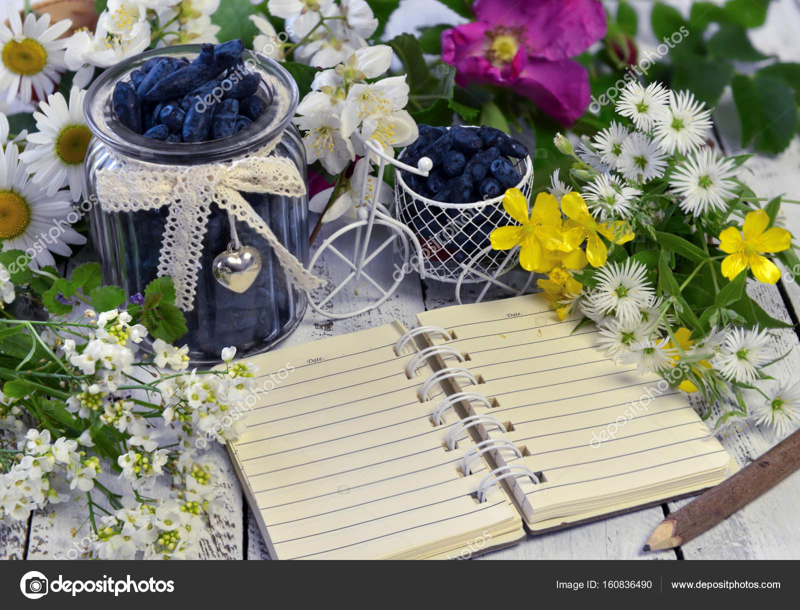Vintage-Objekte, Geißblatt Beeren, Blumen und Notebook mit ...