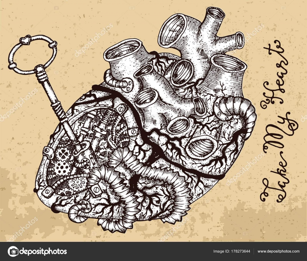 Dessin Coeur Humain Avec Clé Steampunk Pièces Mécaniques Sur