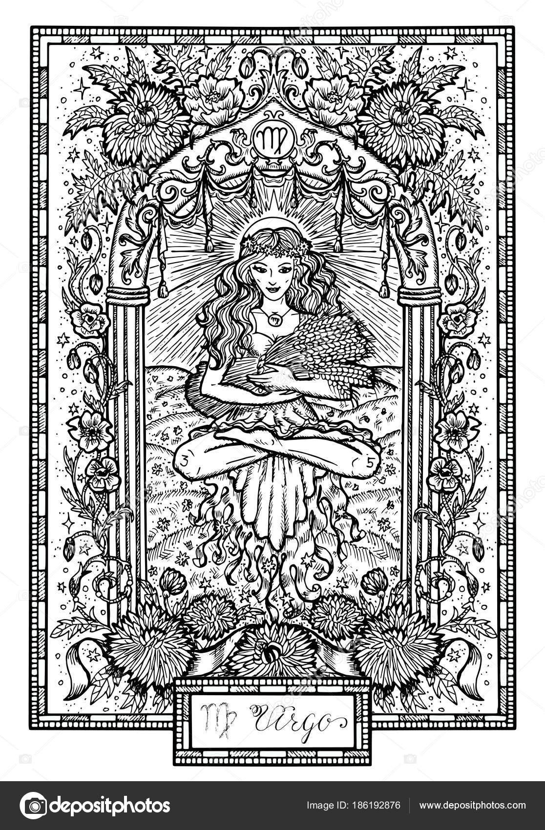 Signe Zodiaque Vierge Vierge Avec Les Asters Les Fleurs Pavot