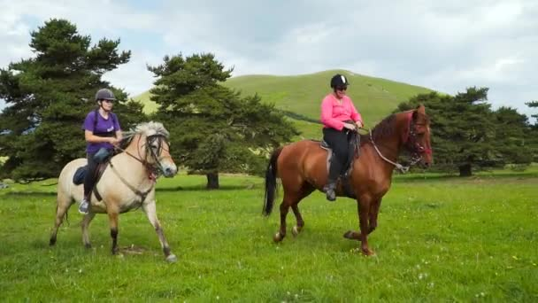 Professional horse riders riding horses slow motion. Equestrians dp equitation. Summer activity, sports at hippodrome with protection. Brown bay horse racing, races betting. Horsewomen