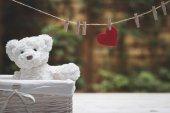 Töltött teddy medve egy kosárban. Piros szív, lóg a szárítókötél. A kert, a háttérben. Valentin-nap. Szív szerelem