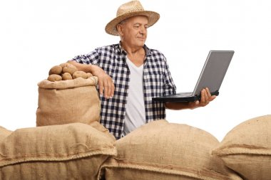 Elderly farmer with sacks filled with potatoes looking at laptop