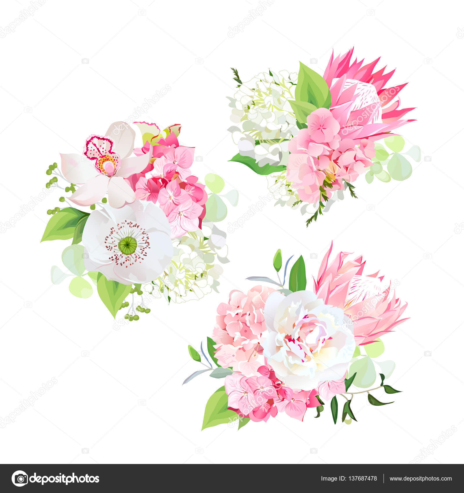 Spring mixed bouquets of pink and white hydrangea, protea flower ...