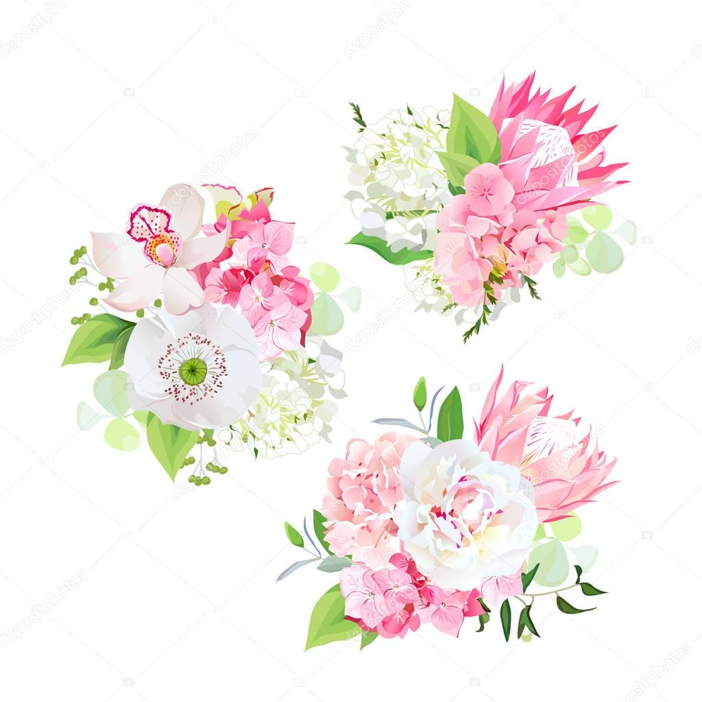 Spring mixed bouquets of pink and white hydrangea, protea flower