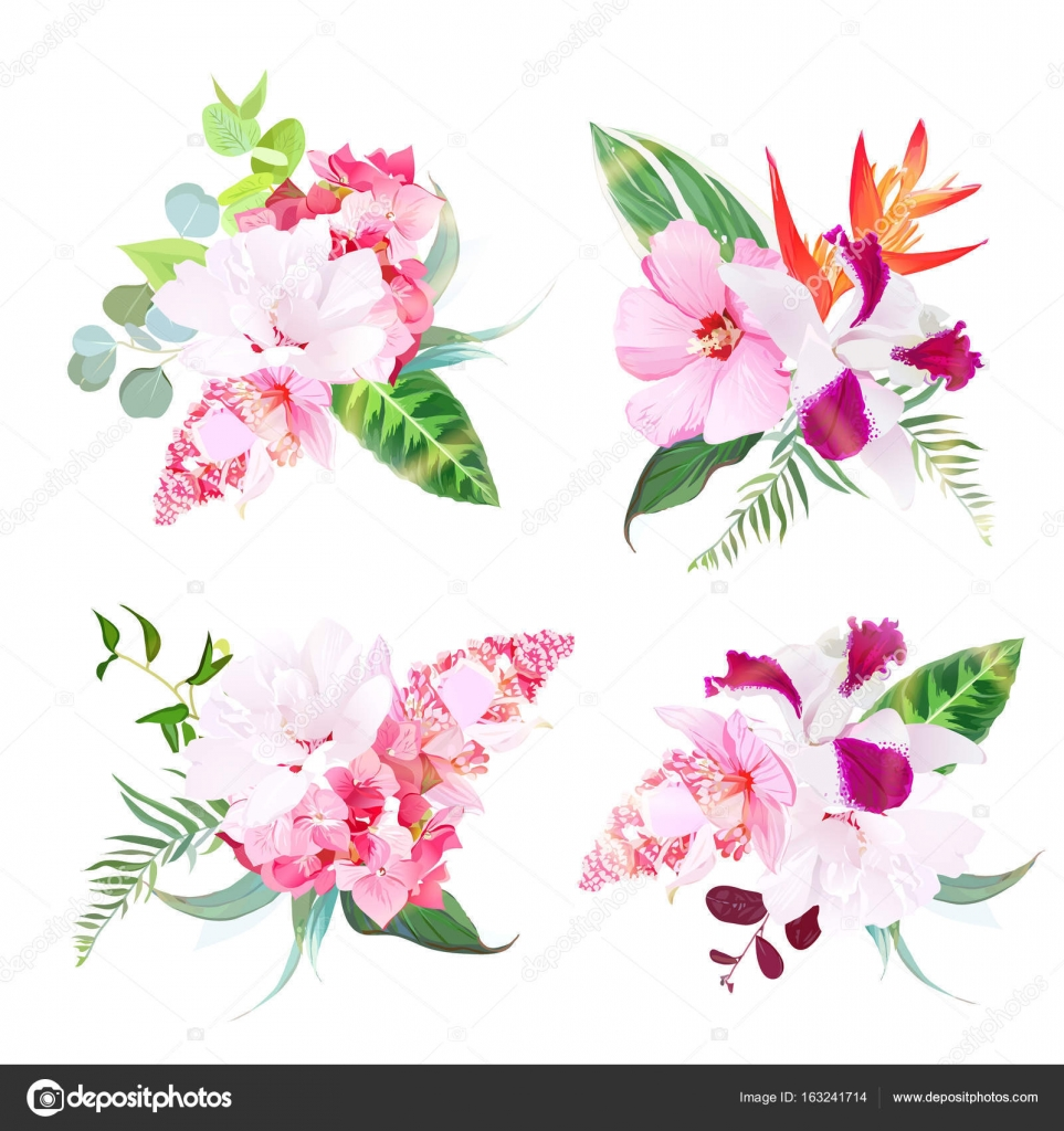 Delicate tropical floral bouquets of hibiscus, medinilla, orchid ...