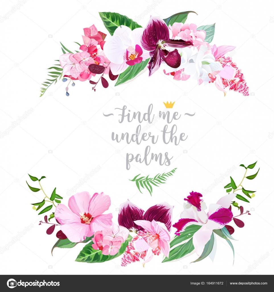 Marco floral redondo tropical exótica — Archivo Imágenes Vectoriales ...